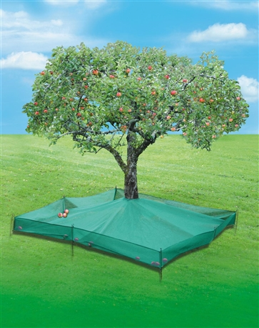 filet collecteur de fruits 6 25 m tom press. Black Bedroom Furniture Sets. Home Design Ideas