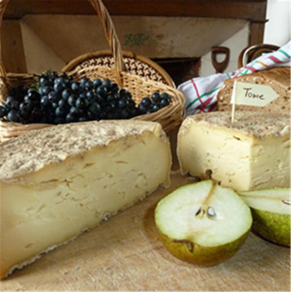 comment-faire-du-fromage-et-de-la-tomme-maison