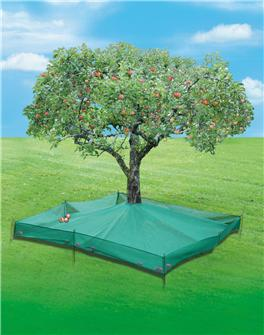 Filet collecteur de fruits 6,25 m²