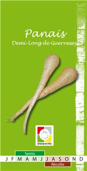 Graines de panais demi-long de Guernesey