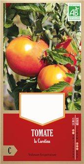 Graines de tomate la Carotina