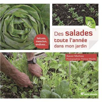Des salades toute l´année dans mon jardin