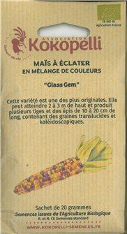 Graines de maïs Glass Gem